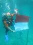 Srikandi SAR Indonesia