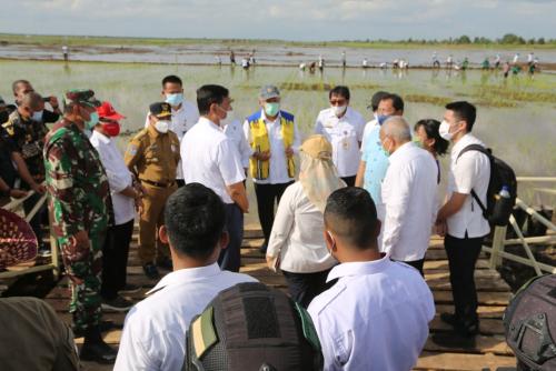 Kementerian Pertanian dan Kementerian PUPR Bangun Lahan Food Estate